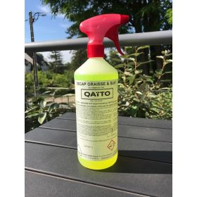 DEGREASING Green Line QAÏTO for Grease and Sute